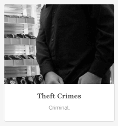 theft crimes attorney tampa
